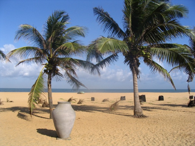 Negombo_Beach,_Sri_Lanka