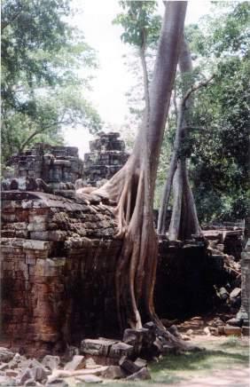 Voyage au Cambodge - album photo (14)